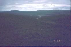 Tsuanjaoaivilta Alemmalle Honkavuomalle 2.8.2002