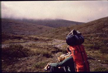 Pälkkimäojan varrelta 30.8.1982