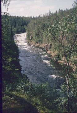Aallokkokoski 16.7.1990