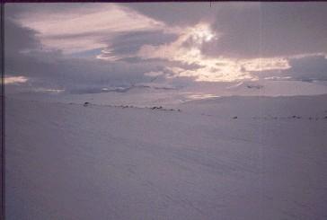 Saana ja Jeähkas Salmivaaran rinteiltä 12.4.1990
