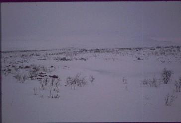 Jogasjärven autiotuvalta koilliseen 16.4.1990