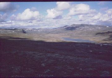 Urttaspahta ja Kovddoskaisa Megonvarrin suunnalta 15.8.1991