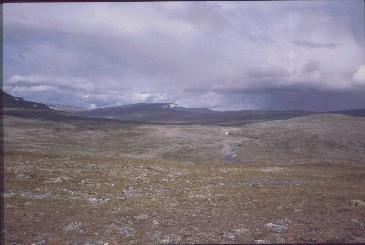 Ridnitsohkka ja Pithsoskordsi Megonvarrin suunnalta 15.8.1991
