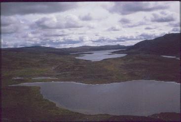 Pitsusjärven luoteispää Vuobmegasvarrilta 16.8.1991