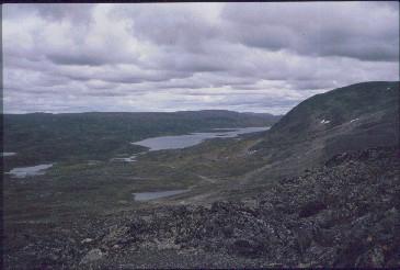 Pitsusjärven luoteispää Marfevarrilta 16.8.1991