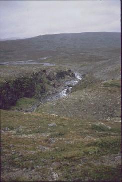 Pithsosjohkan kanjoni putoukselta etelään 18.8.1991