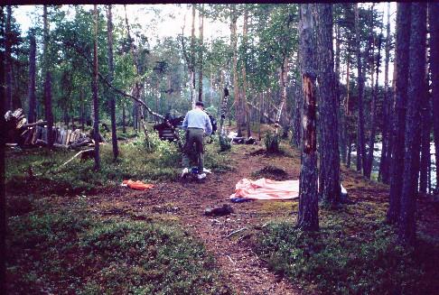 Teltta- ja laavupaikka Lutolla lähellä 11.7.1994