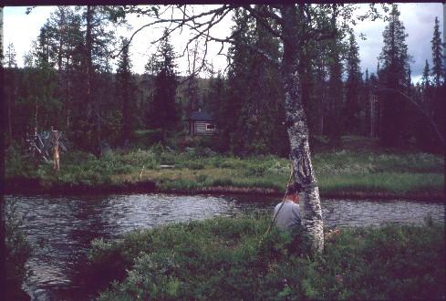 Jaurujoki Peuraselän tuvan kohdalla 14.7.1994