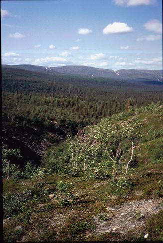 Lumipää, Ukselmapää ja Sollanpää Akanhärkäkurusta päin 15.7.1994