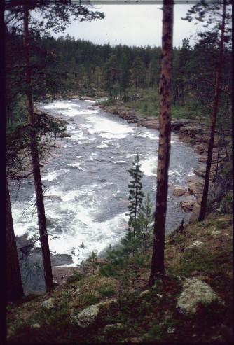 Suomuköngäs 17.7.1994