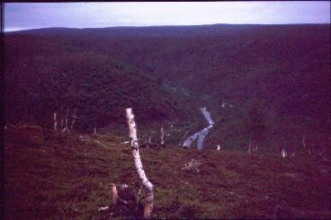 Kevojoki Fiellokeädggeskaidin kohdalla 14.7.1996