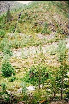 Fiellokeädggejohka laskee Kevojokeen 15.7.1996
