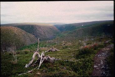 Kevon kanjoni Podosroadjalta 15.7.1996