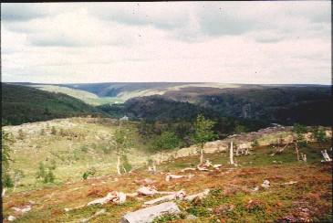 Kevon kanjoni Fiellokeädggejohkan ja Kamajoen välillä 16.7.1996
