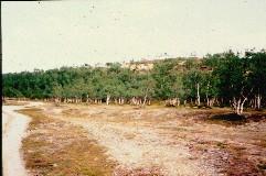 Kevon reitin alkupäästä 15.7.1998