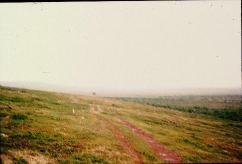 Polku Ruktajärveltä Njavgoaiville 16.7.1998