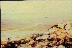 Guovdaoaivilta pohjoiseen 17.7.1998