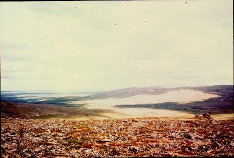 Gaimmioaivilta pohjoiseen 17.7.1998