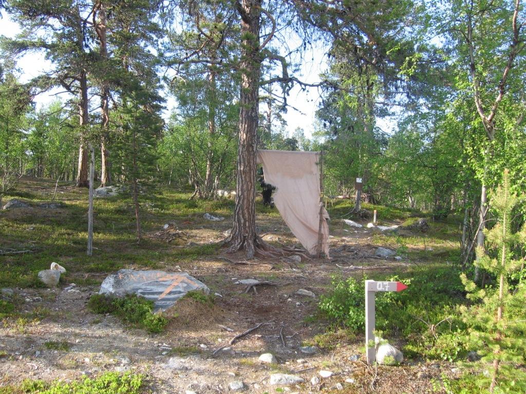 Sevetti-Pulmanki polun alku Ahvenjärven tiellä 29.6.2009