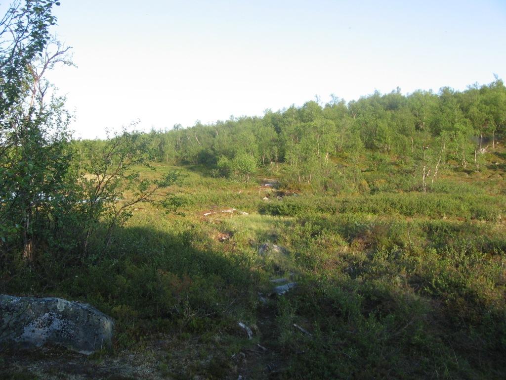 Sevetti-Pulmanki polkua liki Opukasjärveä 29.6.2009