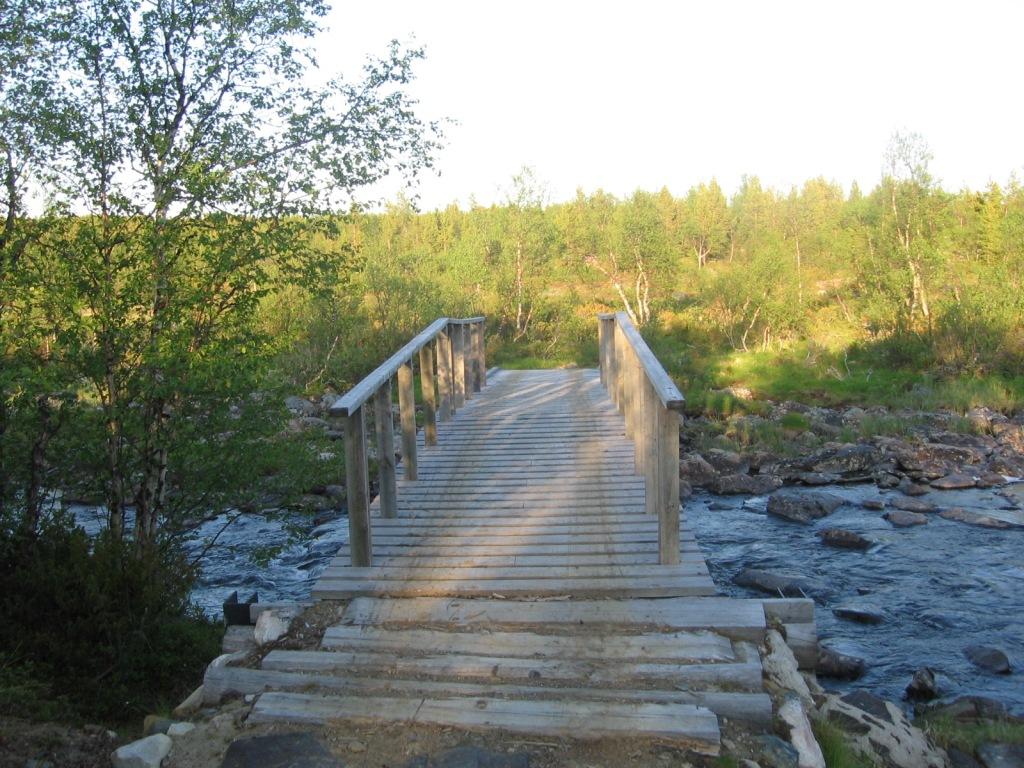 Avlijoen silta 29.6.2009