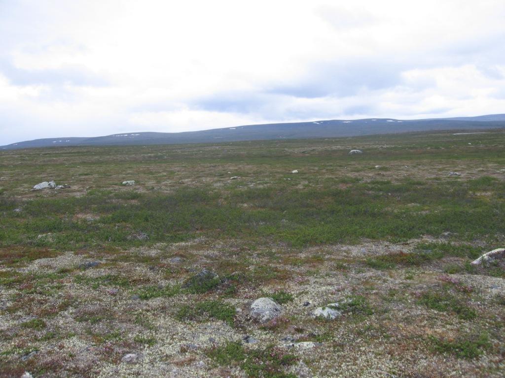 Gavrulvaddalta länteen 3.7.2009