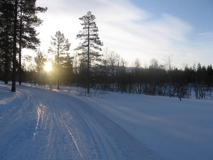 Pyhäkero metsän takana 24.3.2007