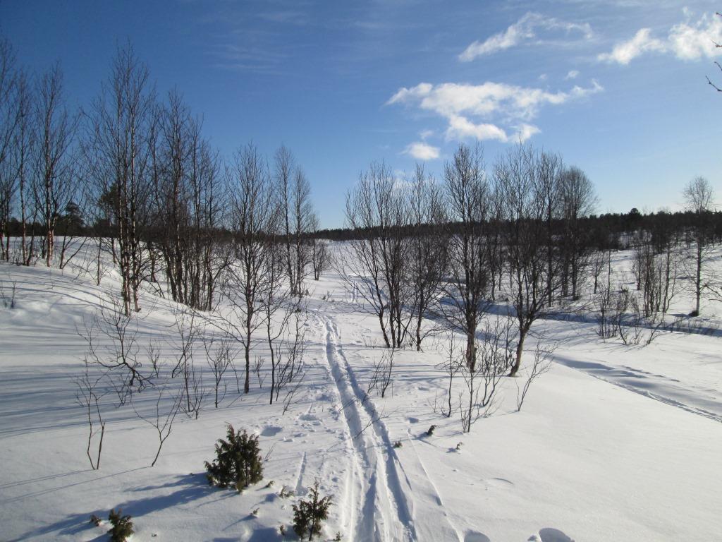 Postijoen latvan tuvan maisema pohjoiseen 25.3.2014