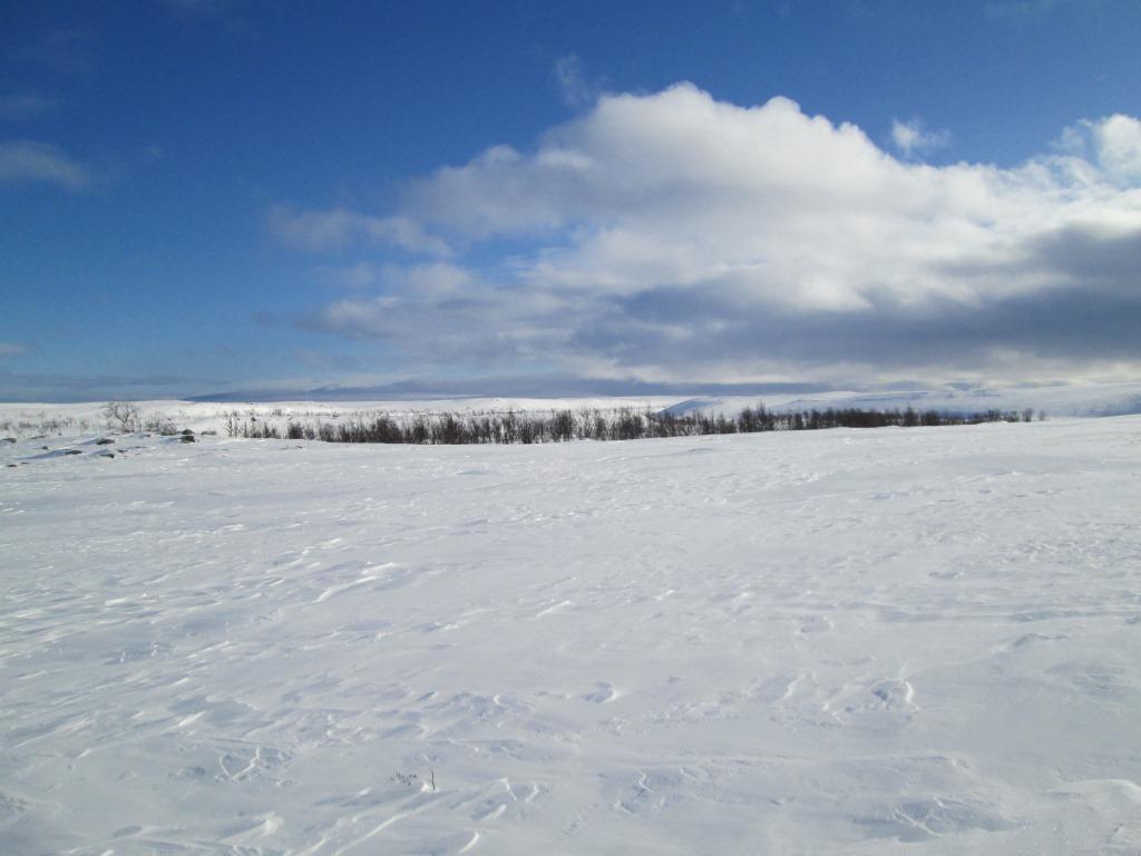 Pohjoiseen virtaava Aatsajoki 25.3.2015