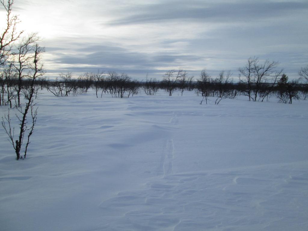 Tarvantovaaralta kohti Matalajärveä 20.3.2017