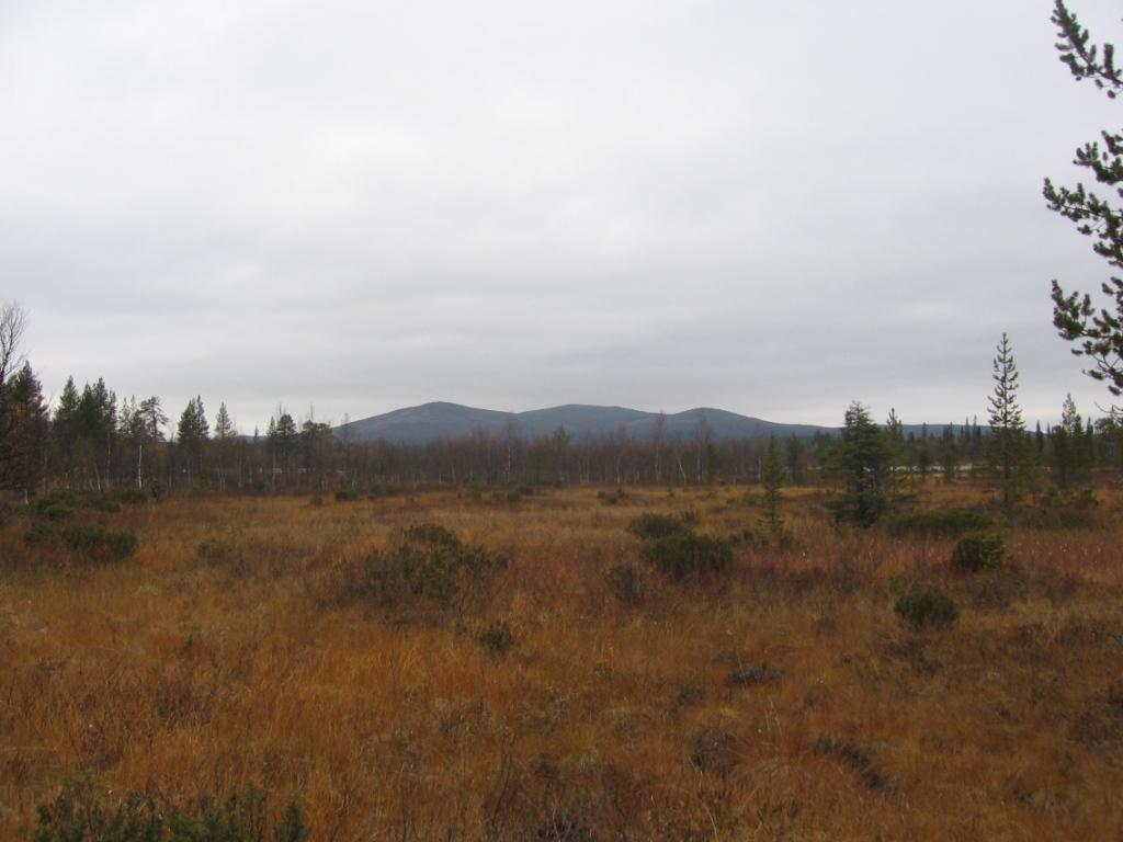 Joukhaispää ja Lupukkapää 22.9.2008