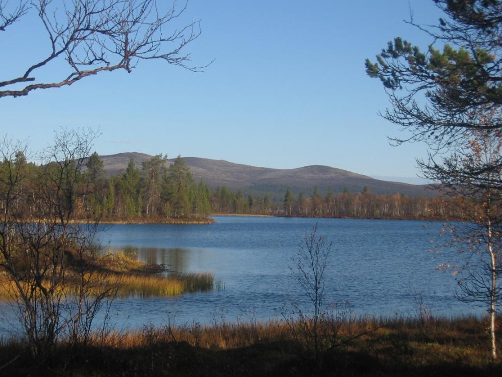 Joukhaispää ja Lupukkapää 23.9.2008
